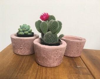 Concrete cement succulent planter