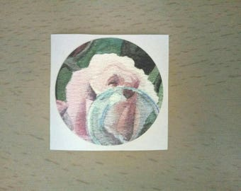 Rose and Bubble Sticker