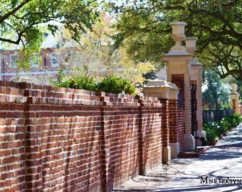 University of South Carolina Horseshoe Gate Photograph