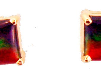 Pair of  Square  Cut Canadian Ammolite set in 14k Rose Gold