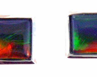 Pair of  Square  Cut Canadian Ammolite set in 14k White Gold