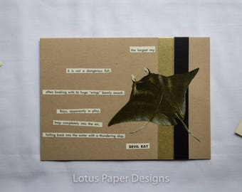 Handmade Blank Greeting Card (Folded A6) - Devil Ray - Golden Guide to FISHES