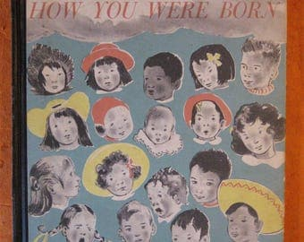 The Wonderful Story of How You Were Born by Sidonie Matsner Gruenberg