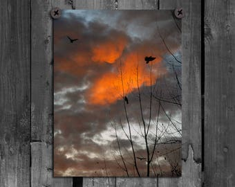 Crows Photograph, Stormy Sky Print, Blackbirds, Ravens Flying, Dark Orange And Black Clouds, Birds, Nature Photograph - Ominous Clouds