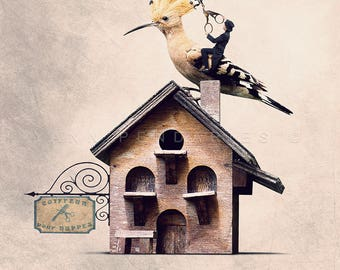 Hoopoe hairdresser photo, bird photo, gift for ornithologist, hairdressing salon decoration, decoration birds, deco for hairdressers