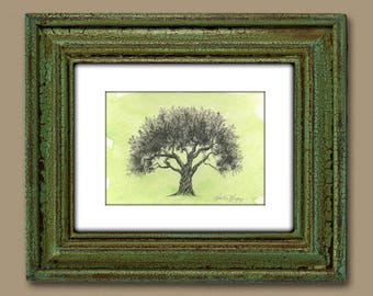 Green Olive Tree Watercolor Painting - Pen and Ink Drawing Art Print