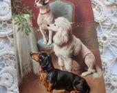 Antique dog postcard, Antique dachshund postcard, Antique poodle postcard, Antique rat terrier postcard, Vintage dog postcard, Art Deco dogs
