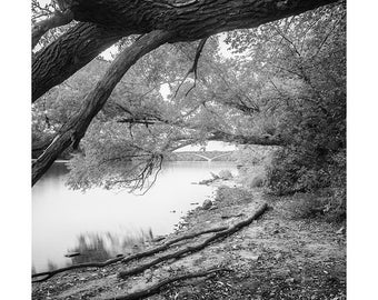 River View (St Claire)