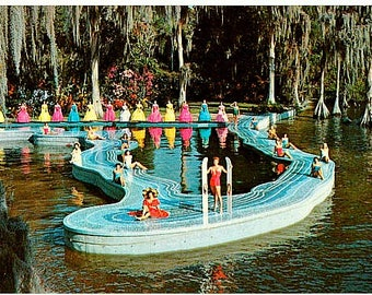 Vintage Florida Postcard - Esther Williams and the Florida Swimming Pool at Cypress Gardens (Unused)