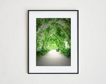 IVY ARCHWAYS | fine art photo print, photo wall art, modern chic sophisticated, garden print, serene image, english ivy, archway view