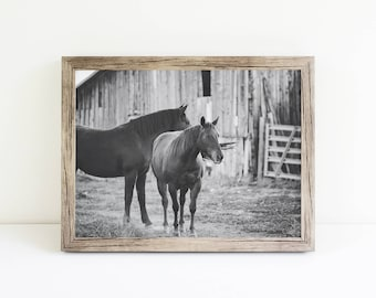 Western Horse near Barn, Black and White Horse Photography, Physical Print