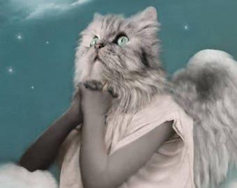Angel Mary, Cat Print, Anthropomorphic, Whimsical Art, Collage Art, Praying Cat, Animal Print, Photo Collage, Altered Photo, Religious Art