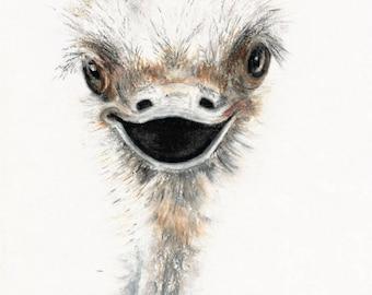 OZZY Ostrich Art Print, Ostrich Wall Art, Bird Print, Pastel Drawing, PRINTABLE ART, Happy Bird Art, Quirky Art Print, Downloadable Art