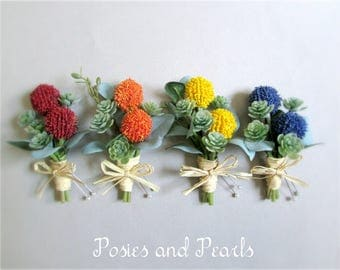 """Craspedia Boutonnieres, Billy Buttons in Yellow, Orange, Red, or Blue, Green Succulent Groom's Boutonniere, Groomsmen, """"Constant"""""""