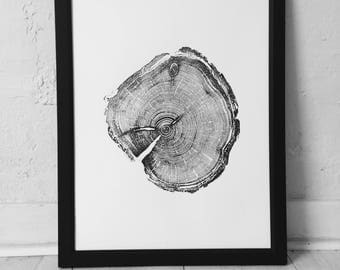 Old Growth Pine, Handmade print, 100 year old pine, Little Cottonwood Canyon, Real Tree Ring Print, woodcut print, Christmas gift idea