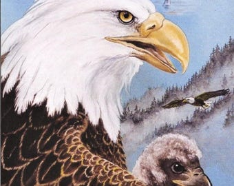 PRINT-EAGLE and YOUNG: hand enhanced, on cover stock, 8 x 10 inches, wall art, bald eagle and eaglet, heritage,
