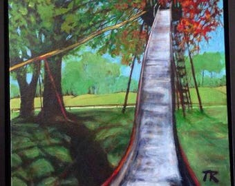 Memories of Owego, New York, the giant slide in Marvin Park, Childhood Memories!
