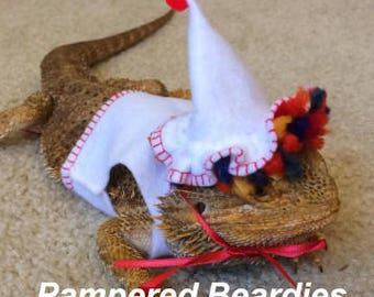 Felt Clown Costume for Bearded Dragons. Hat and vest. One size fits most.