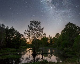 """Night Photography, Milky Way, Nature Photography, Night Sky, Large Wall Print, Fine Art Photography - """"Frog Lullaby"""""""