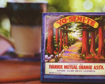 Yosemite National Park Coaster, Antique Fruit Crate Label Art, Handmade Recycled Tile Coaster, Absorbent Drink Coasters