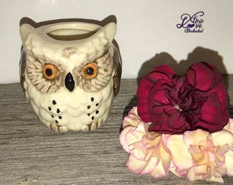 Vintage Ceramic Owl Toothpick Holder, Owl Figurine, Brown and Cream Owl, Small Owl Planter