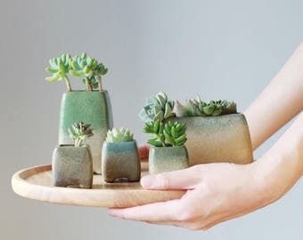 Succulent planter/Set of 3/planter/succulent arrangement/succulent plant/clay planter/turquoise/indoor planter /cactus planter