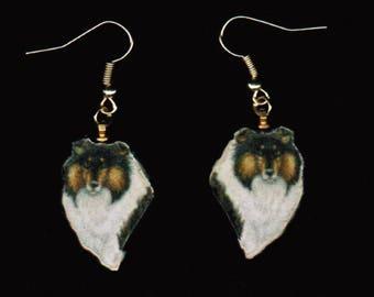 Shetland Sheepdog (Sheltie) Earrings