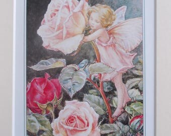 ROSE Flower Fairy, Cecily Mary Barker in 10in x 8in Ivory Mount VINTAGE 8in  x 6in  Print