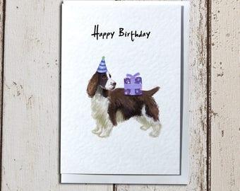Springer Spaniel Birthday Greetings Card