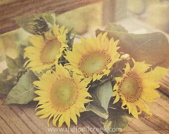 Sunflower Wall Art, Country Home Decor, Sunflower Canvas, Farmhouse Wall Art,  Photo Part 88