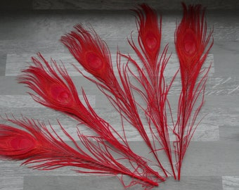 Set of 5 feathers of Peacock tinted red (30cm long)
