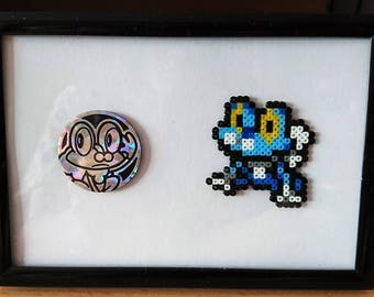 Pokemon Froakie Frame with Froakie Trading Card Game Coin