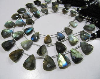 AAA Quality Natural Labradorite Blue Flashy Beads , Trillion Shape Briolette Beads , Strand 9 Inches Long , Beads are 16 to 18mm Long