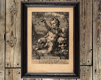 Allegory of the frailty of human life, baroque style, human skull, vanitas, life and death, dark picture, goth artwork, unique poster, 495