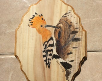 "Madagascar Hoopoe 11x9"" Wooden Wall Plaque"