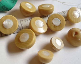 French Ivory Celluloid Button Set of 10 Large Pearl Centered Globe Shaped Buttons.