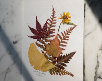 """Four Seasons collection   Autumn   real pressed flower art, 5x7""""   botanical home decor perfect for framing"""