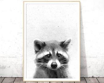 Raccoon Print, Nursery Animal Print, Woodlands Nursery Decor, Black and White, Nursery Wall Art Decor, Woodlands Animal Art, Printable Kids