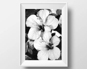 Flower Photography, Black and White, Nature Art Print, Printable Large Poster, Botanical Wall Art Decor, Digital Print, Instant Download
