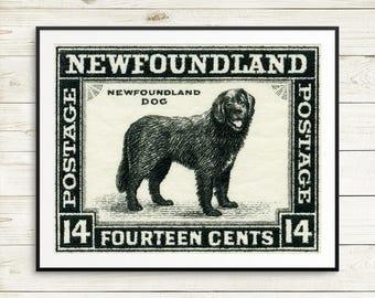 pet gift, newfoundland dog breed, newfoundland dog gift ideas, dog breed newfoundland, newfoundland gift ideas, newfoundland gifts, dog art