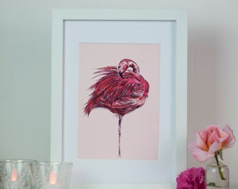Blush Pink Flamingo Bird Watercolour Art Print