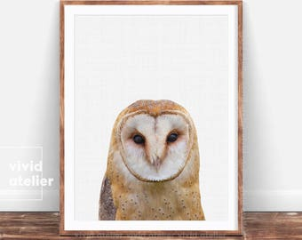 Woodlands Nursery Wall Art, Owl Print, Kids Room Poster, Owl Wall Print, Printable Woodlands Animal, Owl Photography, Forest Animals Poster