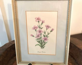 """Vintage Framed Floral """"Fringed Gentian"""" Wildflower Floral Print   Shabby Chic Décor"""