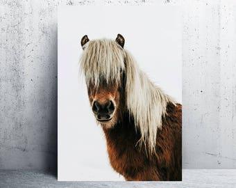 horse printable, horse print, horse print wall art, horse print art, printable art, horse photography, printable wall art, digital prints