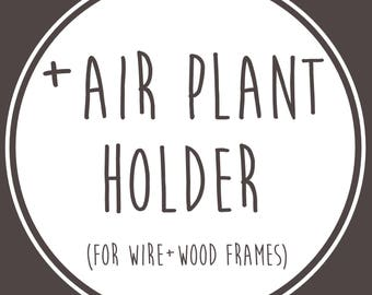 Add Air Plant Holder for Wire+Wood Frames