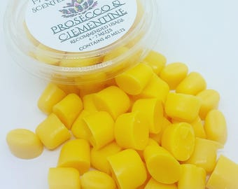 Wax Melts, Prosecco & Clementine, Fruity, Fizzy, Scent Beans, Mini Melts, Pack of 40, Scented Wax Melts, Scented Wax, Home Fragrance.