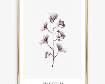 Poster, Print, Wallart, Skandinavian Design: Magnolia