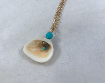 Florida Sea Shell Necklace, Sea Shell Necklace, Teal and Tan Sea Shell Necklace