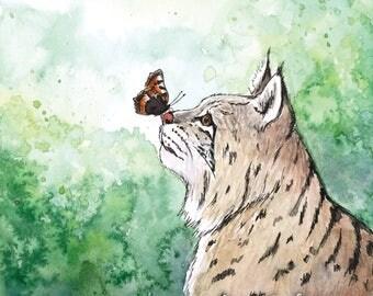 The bobcat postcard