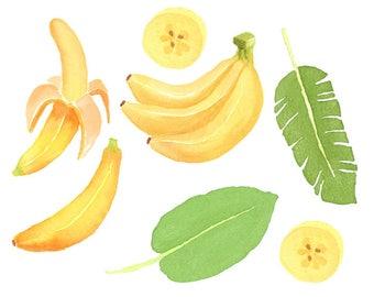 Watercolor Banana Set, Fresh, Leaf, Tropical, Summer, Plant, Hawaiian, slice